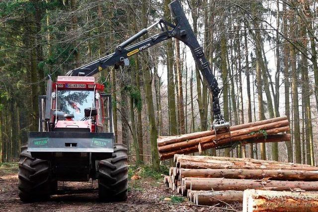 SPD im Kreis Lörrach fordert: Holz soll regional genutzt werden