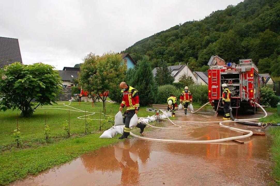 Die Feuerwehr hatte mehrere Stunden in Herten einen Einsatz in der Bromhalde.    Foto: Petra Wunderle