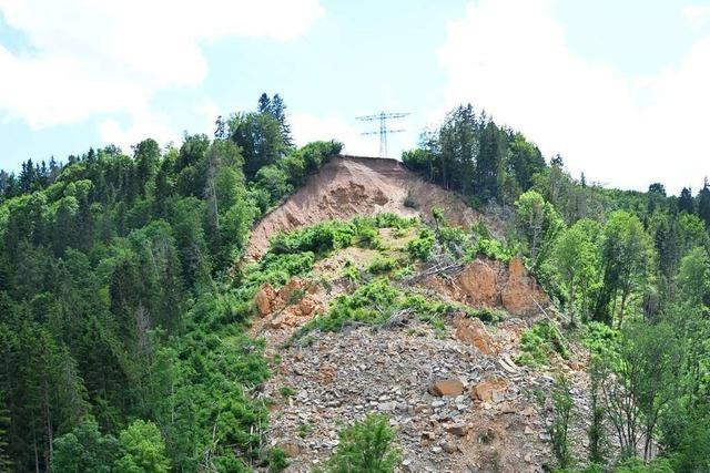 Warum es bei der Wutachschlucht immer wieder Steinschläge und Erdrutsche gibt
