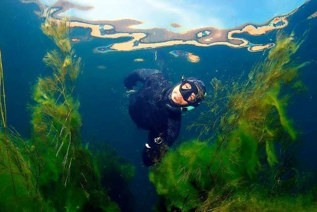 Taucher scheitert an Rekordversuch im Bodensee und wird ohnmächtig