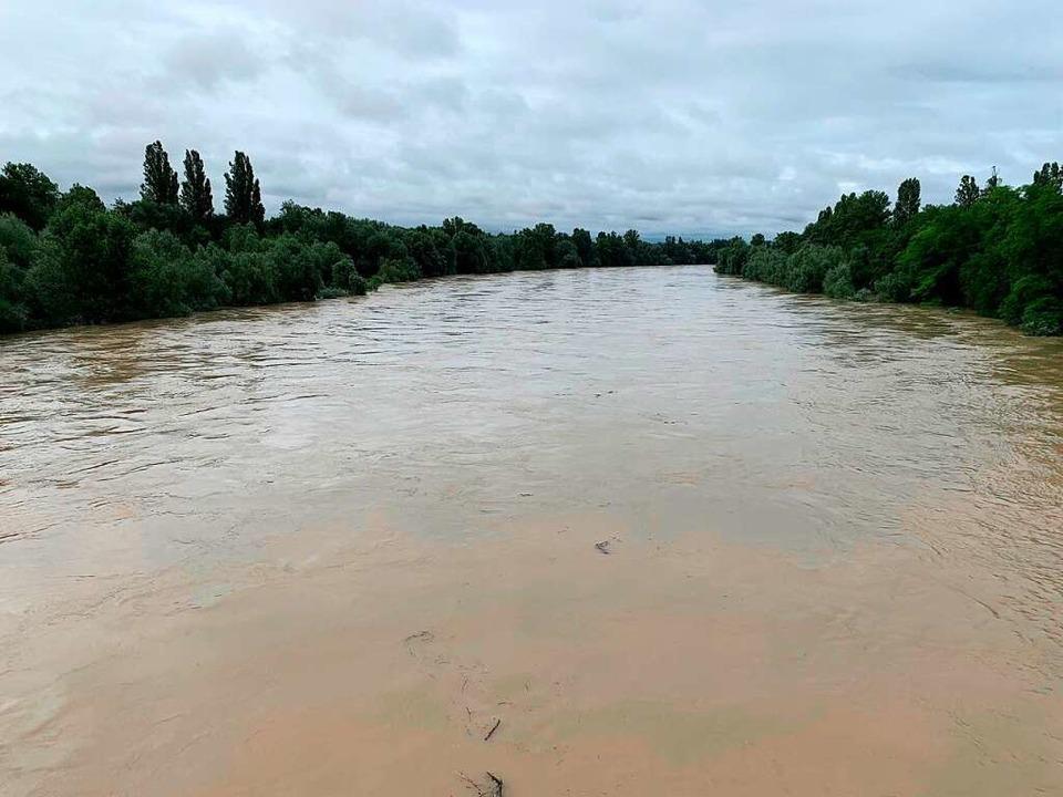 Der Rhein bei Hartheim führt so viel Wasser wie seit Jahren nicht.  | Foto: Stefan Ostermaier