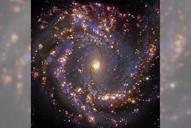 Die Entstehung von Sternen