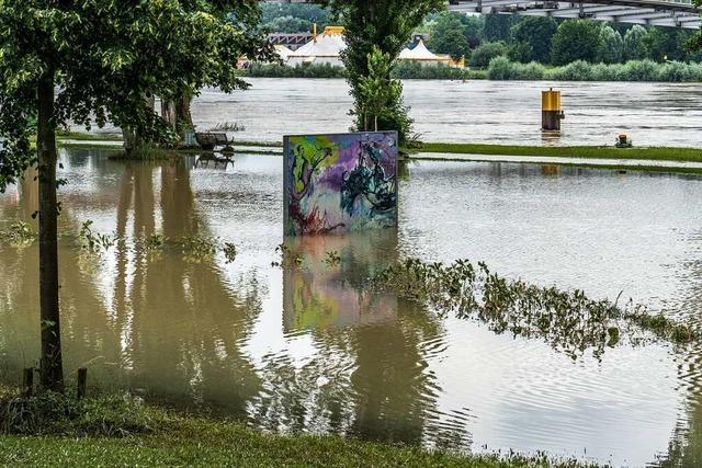Kehl schützt die freie Rheinstrecke mit gefluteten Poldern vor dem Hochwasser