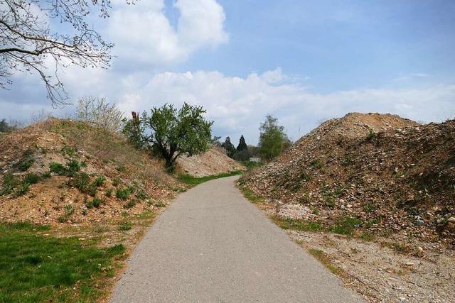 Wie die Stadt Rheinfelden mit dioxinbelastetem Erdreich umgeht