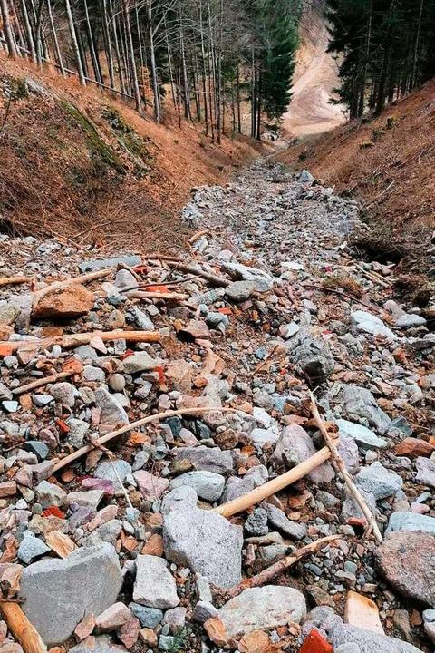 Bei Erdrutschen im Kleinen Wiesental w...t des Aushubmaterials zutage getreten.    Foto: Privat