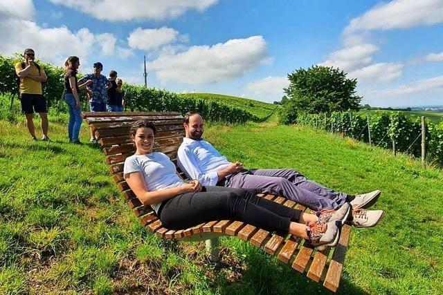 Ein neuer Weinlehrpfad führt künftig über den Batzenberg