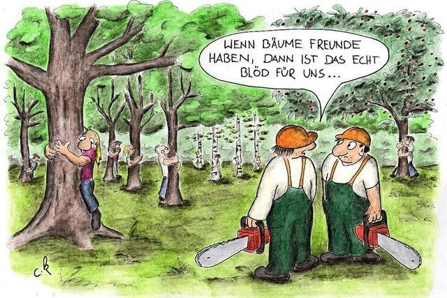 Warum nicht das Gelände mit allen Bäumen öffentlich zugänglich machen?