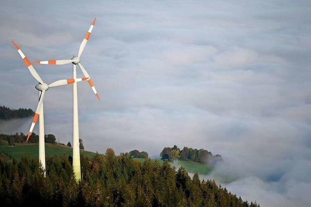 Bürgerinitiative will Windräder auf dem Blauen im Markgräflerland