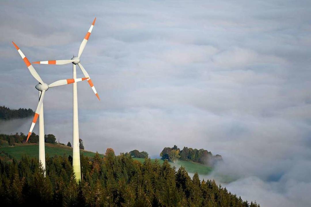 Windräder auf dem Blauen – das F...n die Mitglieder der Bürgerinitiative.    Foto: Patrick Seeger