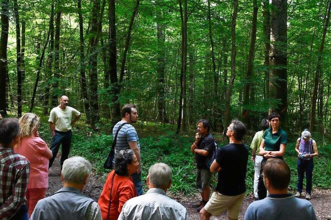 Im Staatswald bei Feldberg tauschten s...hensweise der Waldbewirtschaftung aus.    Foto: Volker Münch