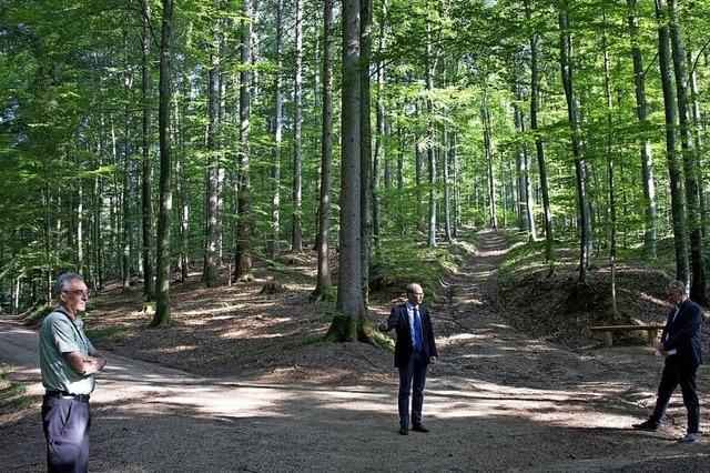 Hohe Nachfrage im Bestattungswald
