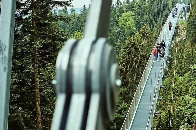 Flächen für Hängebrücke