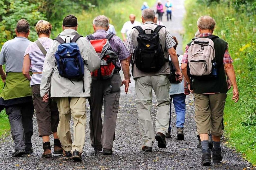 Die Ortenau ist als Wander- und Ausflu...atzsituation besser im Griff zu haben.  | Foto: Uwe Zucchi (dpa)
