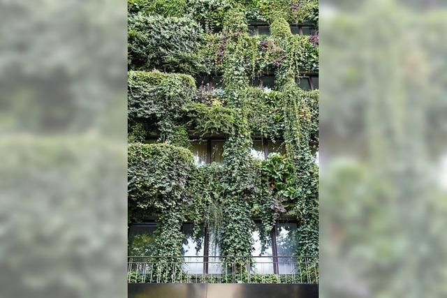 Wohnen und Arbeiten im Grünen