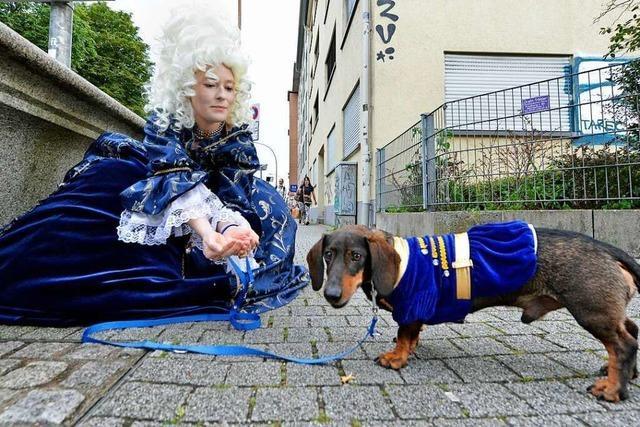 Wenn Maria Antonia mit Dackel durch Freiburg spaziert