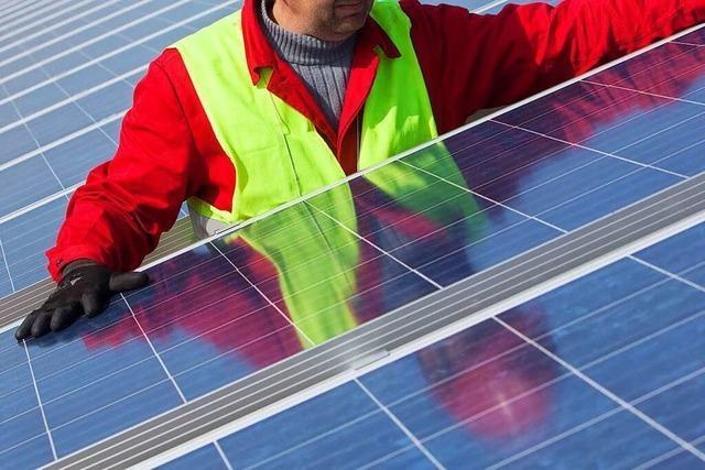 Bisher unbekanntes Biotop verhindert Photovoltaik-Park in Fröhnd