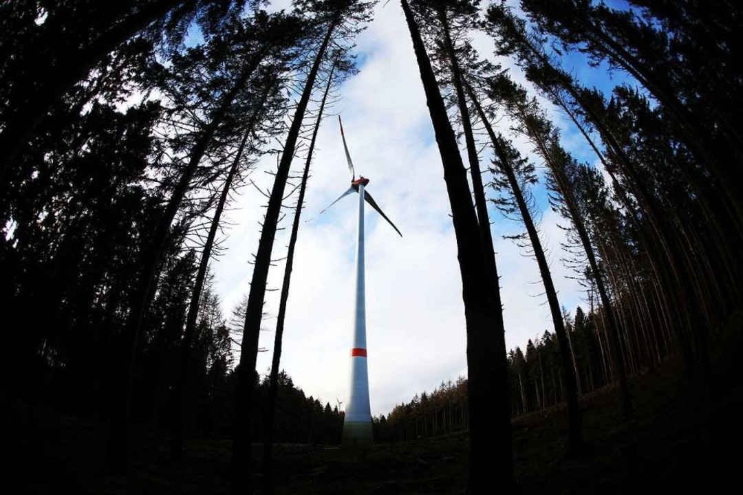 Windkraftausbau im Wald    Foto: Oliver Berg