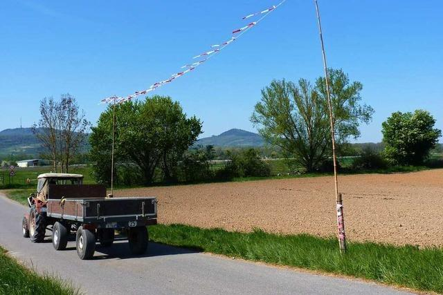 Breisacher Grüne fordern Moratorium für Straßenprojekt