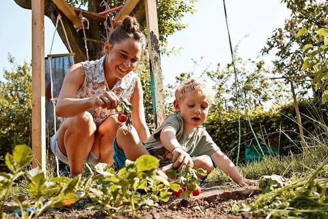 Gundelfingen will einen Naturkindergarten errichten