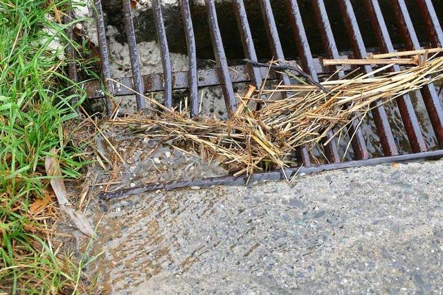 Egringen und Wintersweiler haben beim Schutz gegen Regenfluten Vorrang