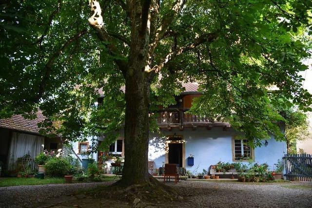 Theater im Hof in Kandern-Riedlingen startet in zweite Corona-Spielzeit