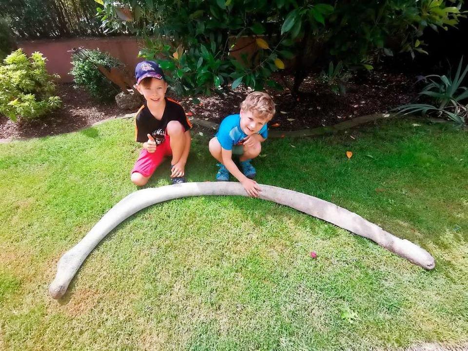 Die beiden Brüder Joel und Milan Krüge...en sie in der Schutter gefunden haben.  | Foto: privat