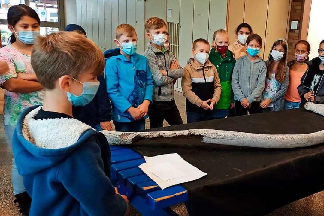 Joel Krüger (links) zeigte den Knochen... Klasse 4 der Grundschule Reichenbach.  | Foto: Privat