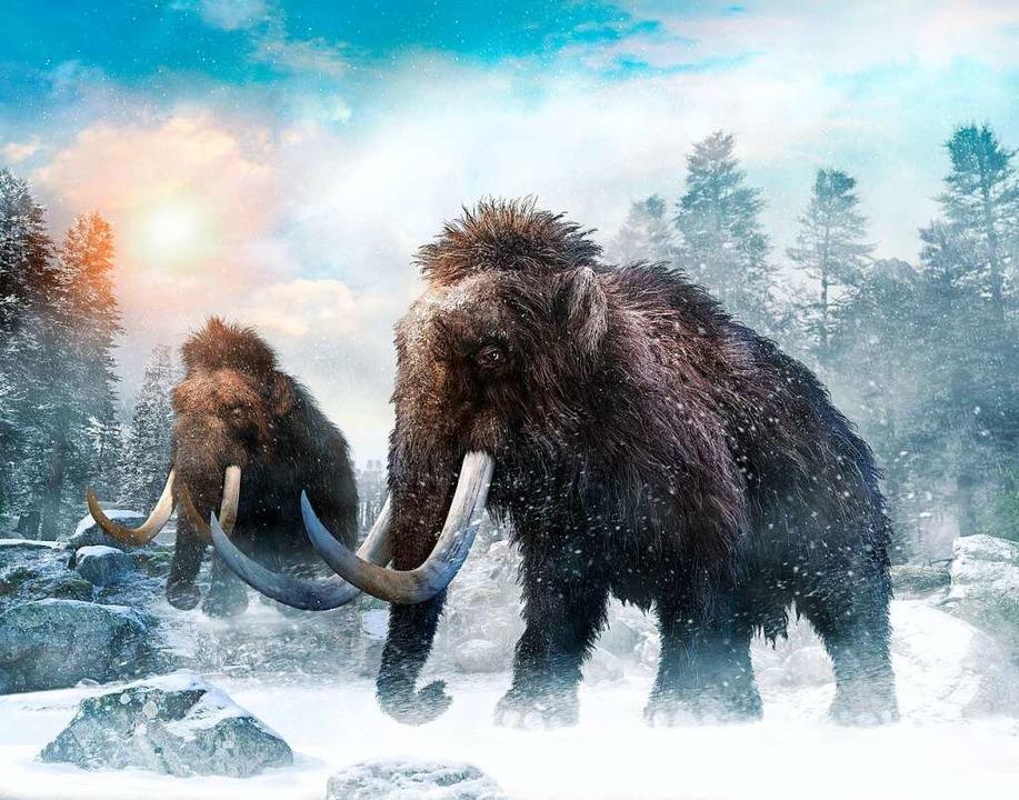 Ein urzeitliches Mammut  | Foto: warpaintcobra  (stock.adobe.com)