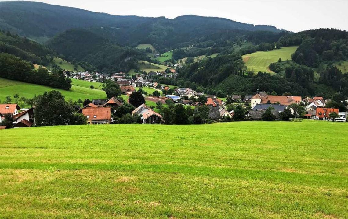 Auf dem Gelände am Steiertenhof in Oberried soll gebaut werden.    Foto: Michael Dörfler