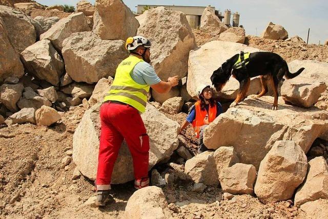 Wie Rettungshunde in Bötzinger Steinbruch für den Einsatz trainieren