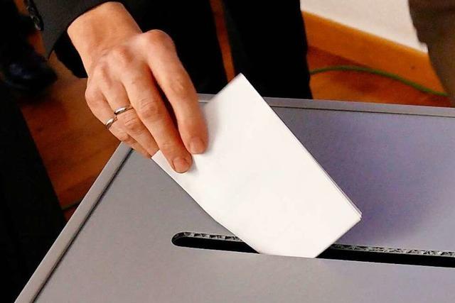 13 Kandidaten aus dem Wahlkreis Lörrach-Müllheim wollen in den Bundestag