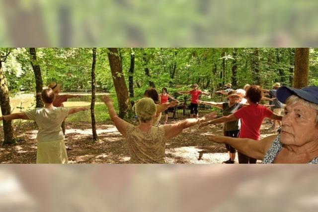 Bewegt Gesundheit tanken im Wald