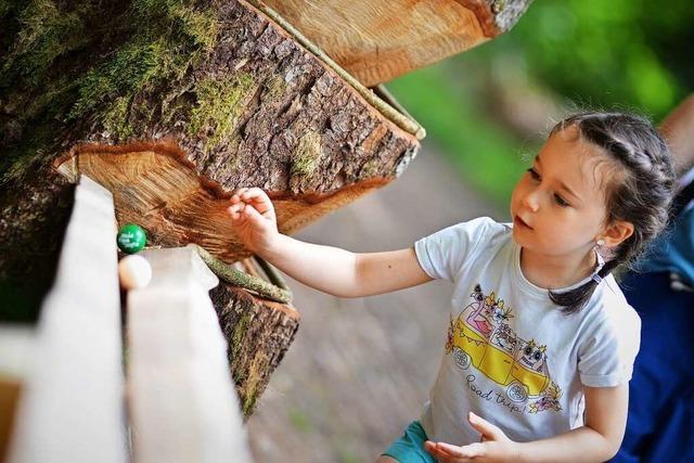 Die Waldkugelbahn in Birkendorf begeistert nicht nur Kinder