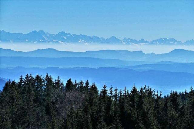 Den Schwarzwald zu Fuß erkunden: Mit diesen drei Wanderführern gelingt die Auszeit