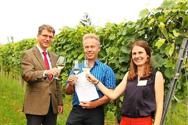 Beste Piwi-Weine am Weinbauinstitut Freiburg ausgezeichnet