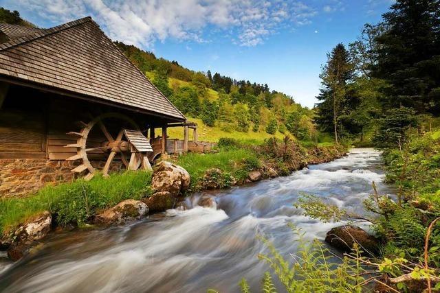 Das Glottertal ist mehr als Schwarzwaldklinik und Touristenmagnet