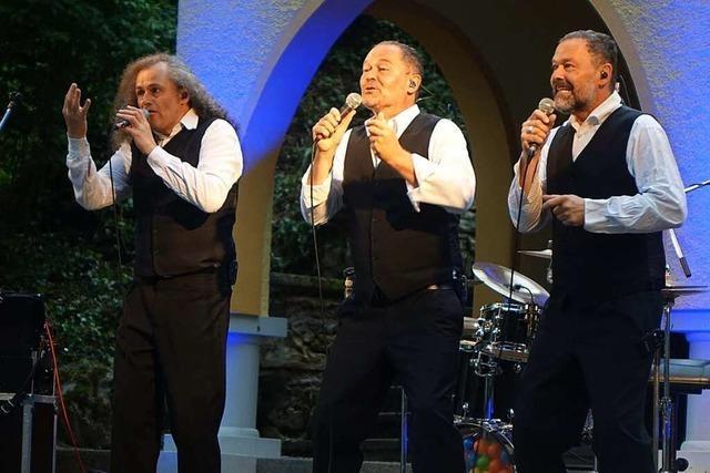 Regen stoppt originelles Konzert in Laufenburg