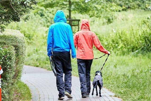 Wetterstation Schwörstadt: Der Juli war ein Monat ohne Hitzetag