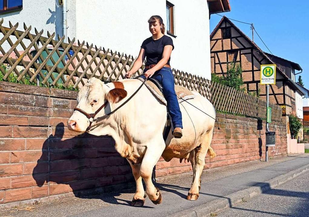"""Immer wieder sprechen Tierschützer Son...ne Kuh sei nicht dafür gemacht.""""    Foto: Uli Deck (dpa)"""