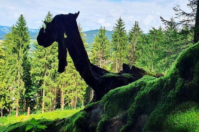 Macht Nessie Urlaub im Schwarzwald?