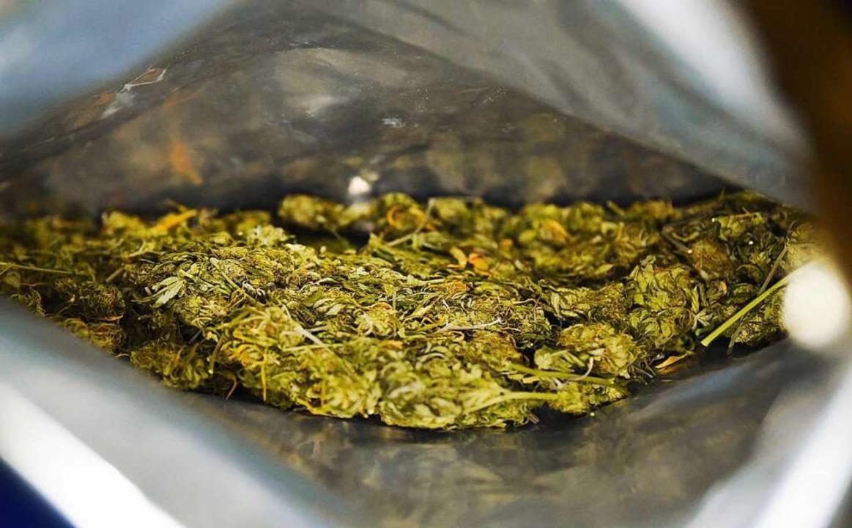 Sichergestelltes Marihuana  | Foto: Nicolas Armer