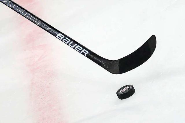 Die Spieler des DEL-Klubs Schwenninger Wild Wings sind zurück auf dem Eis