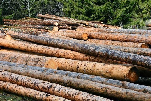 Zuversicht bei Waldbesitzern