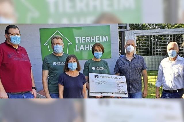 Spende für den Tierschutzverein Lahr