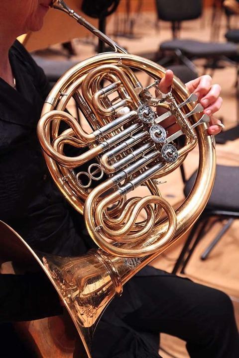 Auch das Horn (Bild) ist diesmal beim Deutschen Musikwettbewerb dabei.  | Foto: Axel Nickolaus