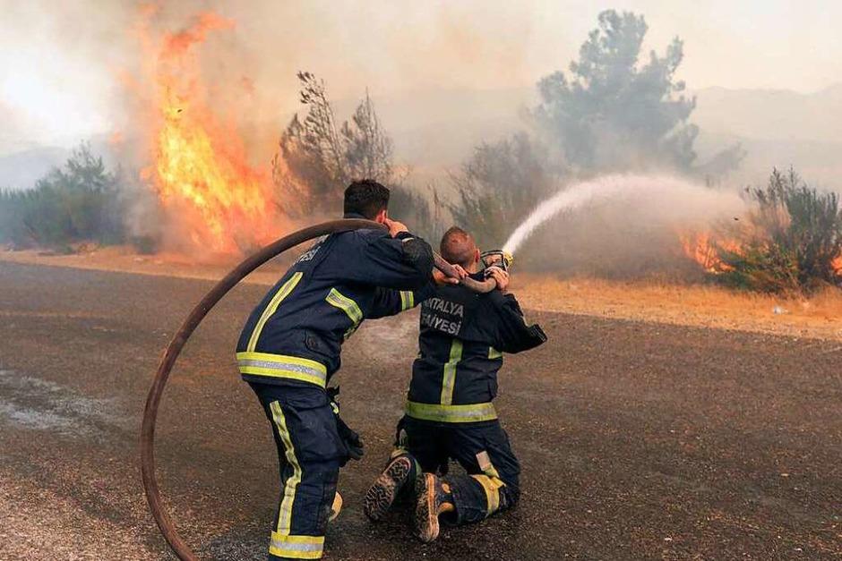 Waldbrände in der Türkei (Foto: - (dpa))