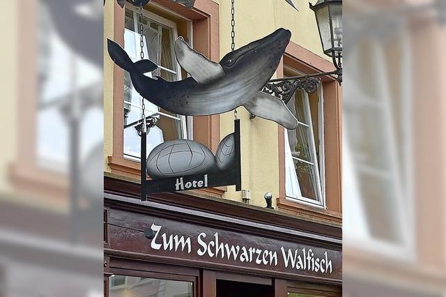 Ein Walfisch auf Reisen