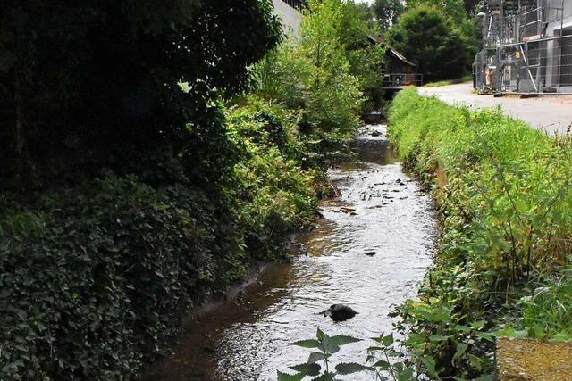 An diesen Stellen investiert Lörrach in den Hochwasserschutz
