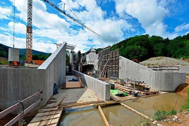 In Horben baut Freiburg einen Hochwasserdamm für fast alle Risikoszenarien