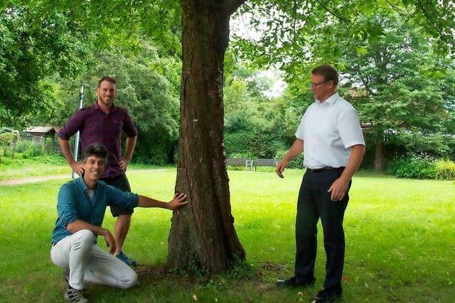 Die Gemeinde Buggingen bezahlt Bürgern Bäume für ihren Garten